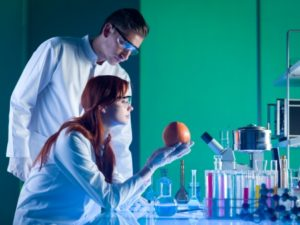 side view of scientists looking at a colorful grapefruit in a laboratory
